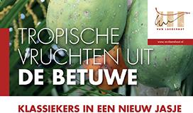 tropische vruchten uit de betuwe - Van Laere Hout